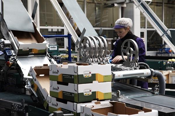 Organizzazioni di Produttori, un valore aggiunto per l'Alto Adige