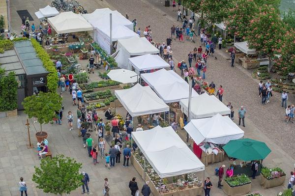 Merano Flower Festival, debutto con i fiocchi – Buongiorno Südtirol
