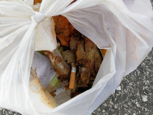 Bolzano. Automobilista sorpreso a gettare rifiuti nel cassonetto della carta